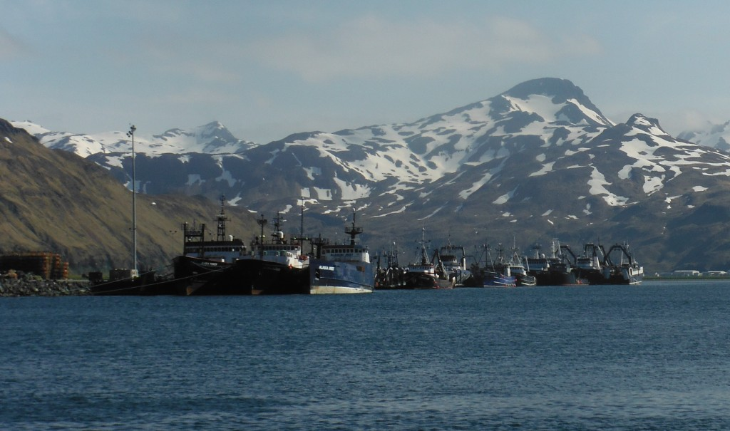 Alaska may be cold, but it's darn beautiful.  These are fishing boats like the ones Lindsey works on in Dutch Harbor, AK.