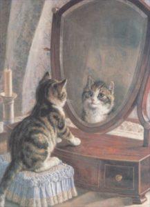 cat_mirror
