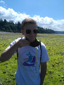 Playing with Moon Snail eggs at Saltwater State Park with the Seattle Aquarium Beach Naturalist Program