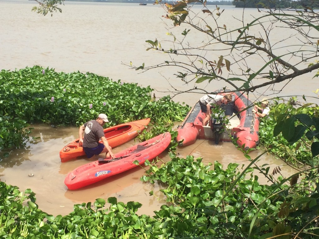 Kayaks and inflatable boats came in handy for Mekong mangrove studies