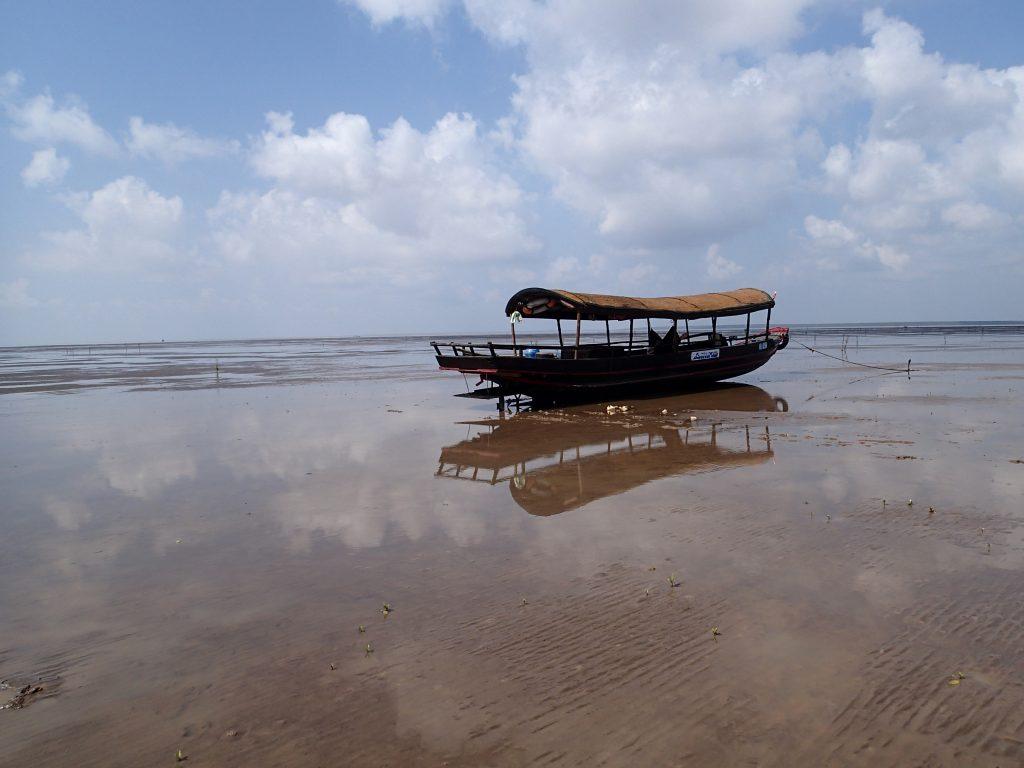 Mekong Delta tidal flat