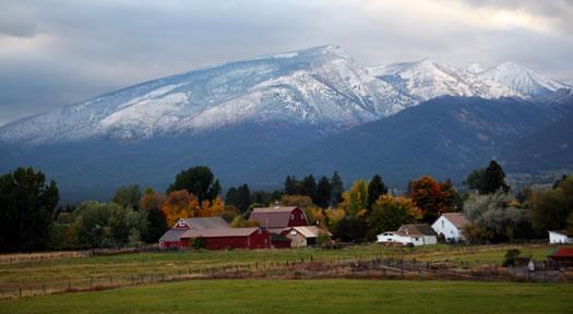Hamilton | WWAMI Rural Integrated Training Experience (WRITE)
